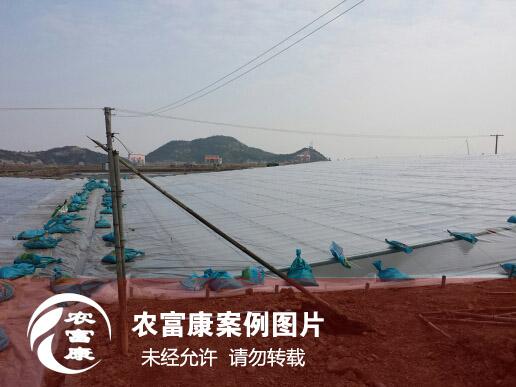 农12博体育水产养殖图片